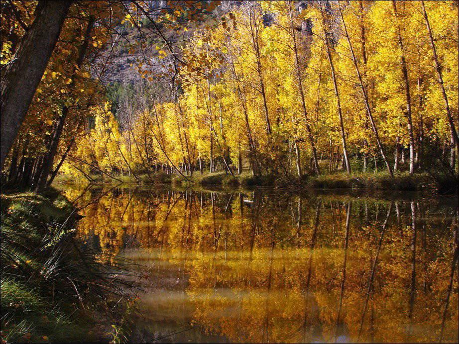 Barwy jesieni #2 37