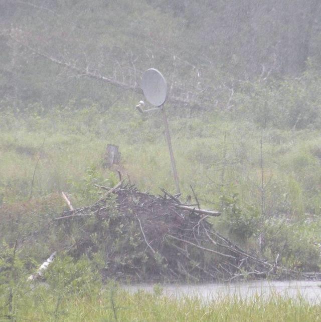 Najdziwniejsze anteny satelitarne 28