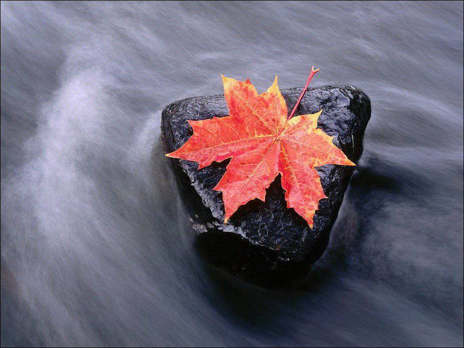 Barwy jesieni #2 19