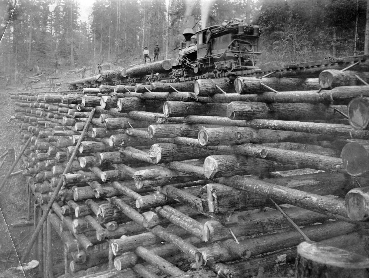 Drewniany most kolejowy 1