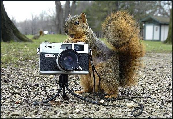 Fotografowie, czyli po drugiej stronie obiektywu 49