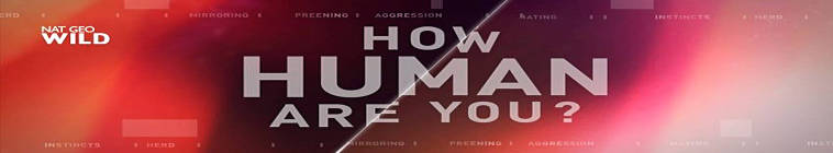 How Human Are You S01E03 Follow the Leader 720p HDTV x264-TERRA