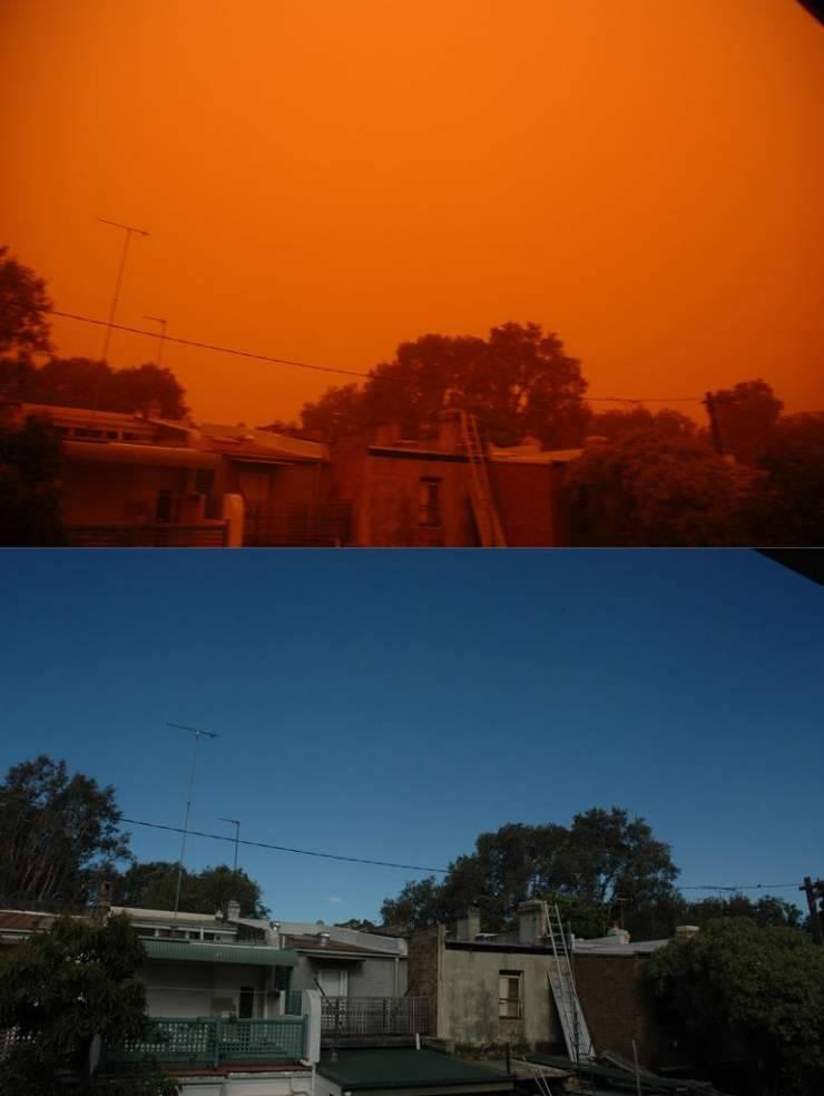 Pomarańczowe Sydney 42