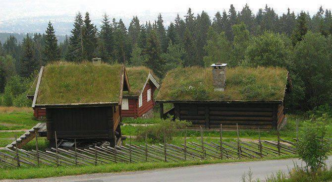 Zielone dachy w Norwegii #2 12