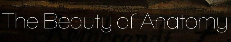 The Beauty Of Anatomy S01E03 Rembrandt And Ruysch 480p HDTV x264-mSD