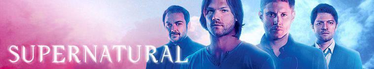 Supernatural S10E03 Soul Survivor 480p HDTV x264-mSD