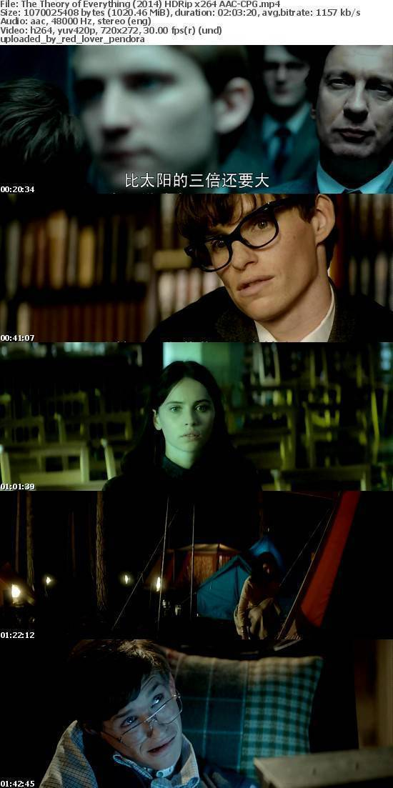 The Theory of Everything (2014) HDRip x264 AAC-CPG