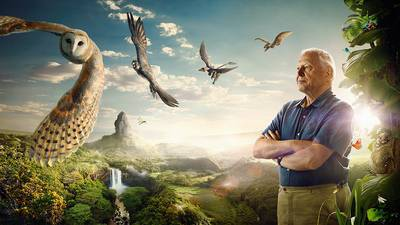 David Attenborough's Conquest Of The Skies S01E02 Rivals (2015) HDTV XviD-AFG
