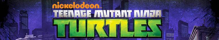 Teenage.Mutant.Ninja.Turtles.2012.S03E09.HDTV.x264-QCF