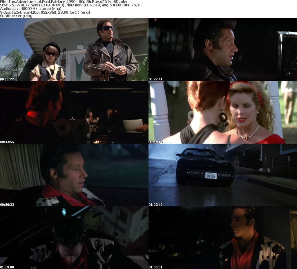 The Adventures of Ford Fairlane 1990 480p BluRay x264-mS