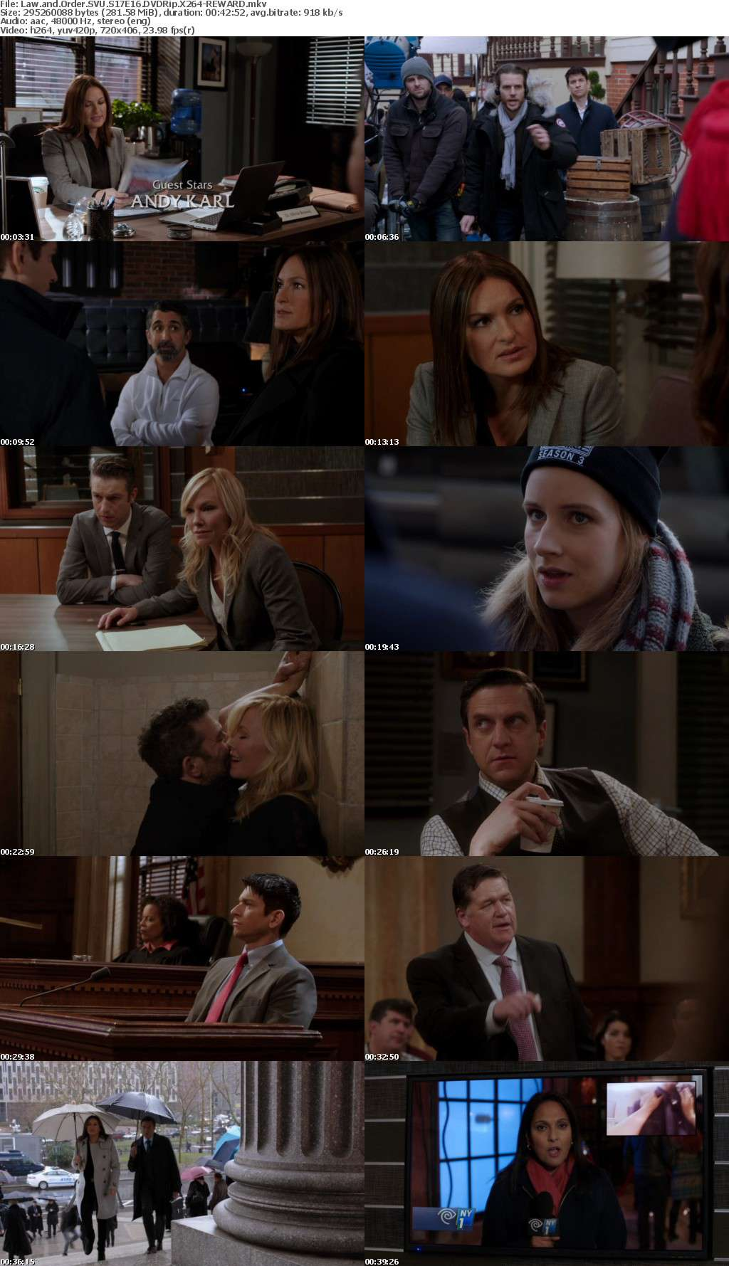 Law and Order SVU S17 DVDRip X264
