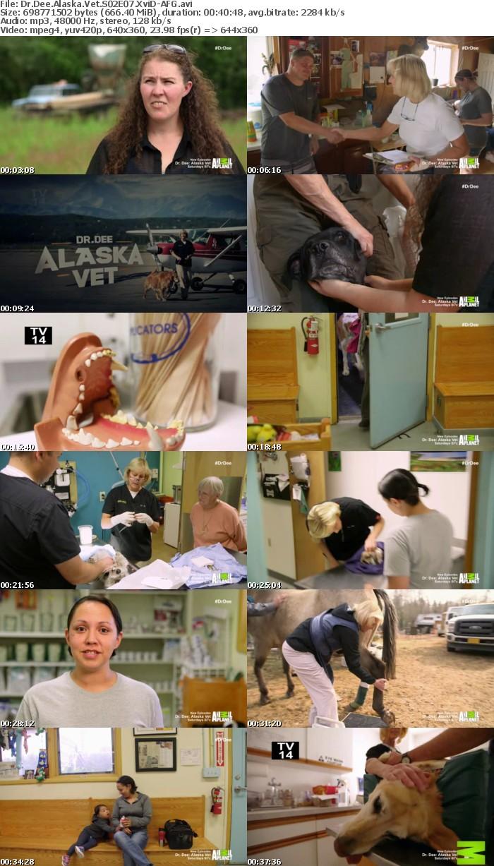 Dr Dee Alaska Vet S02E07 XviD-AFG