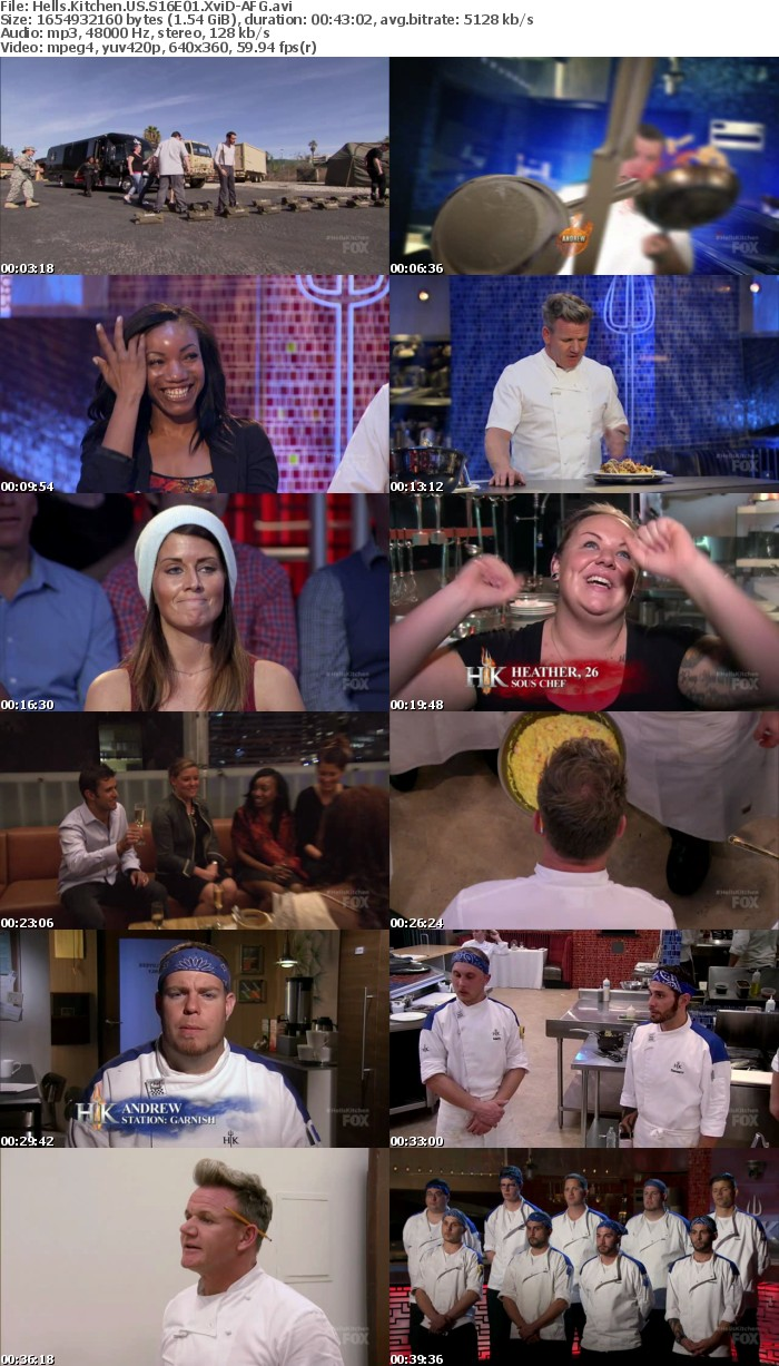Hells Kitchen US S16E01 XviD-AFG