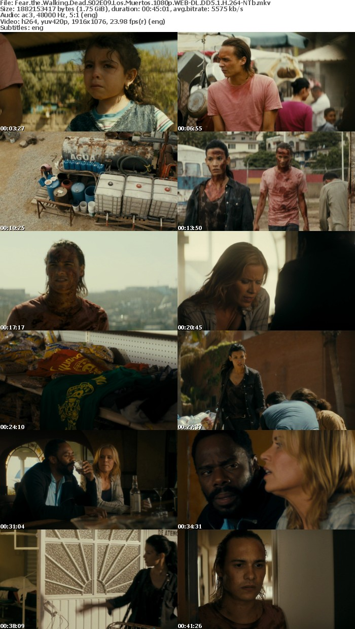 Fear the Walking Dead S02 1080p WEB-DL DD5 1 H 264-NTb