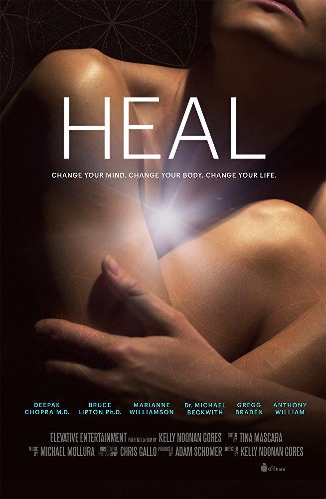 Heal 2017 DOCU WEB-DL XviD AC3-FGT
