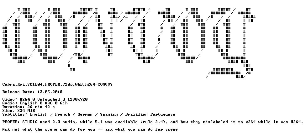 Cobra Kai S01E04 PROPER 720p WEB h264-CONVOY