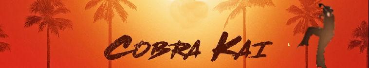 Cobra Kai S01E01 1080p WEB h264-CONVOY