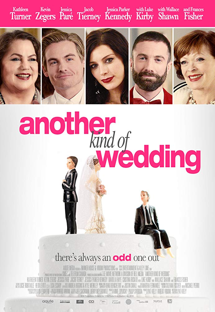Another Kind of Wedding 2018 DVDRip XviD AC3-EVO[TGx]