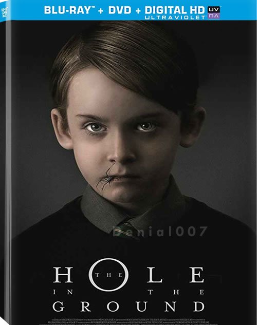 The Hole in the Ground (2019) WEB-DL XviD MP3-FGT