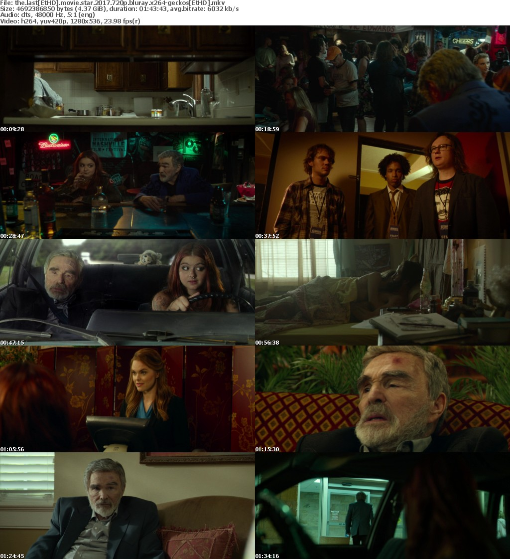 The Last Movie Star (2017) 720p BluRay x264-GECKOS