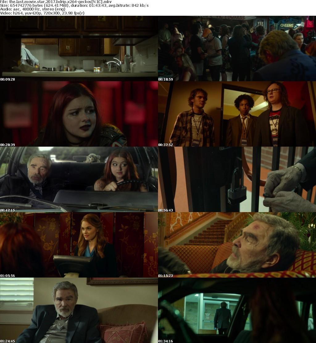 The Last Movie Star (2017) BDRip x264-GECKOS