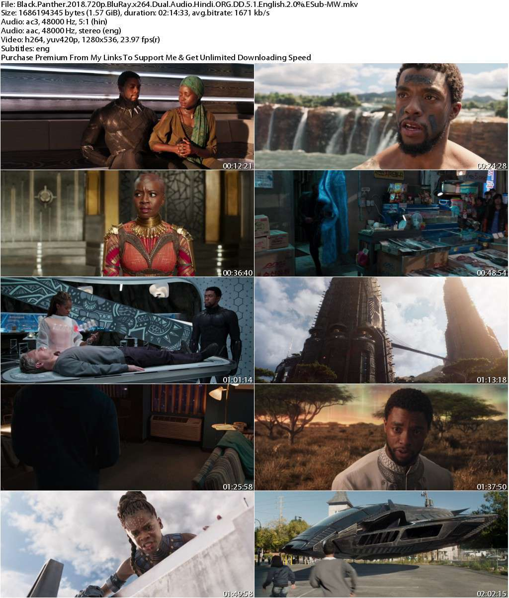 Black Panther (2018) 720p BluRay Dual Audio [Hindi ORG DD.5.1+English] ESub-MW