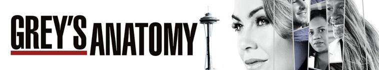 Greys Anatomy S14E23 MULTi 1080p HDTV x264-SRiZ