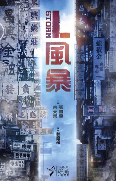 L Storm 2018 CHINESE 1080p BluRay H264 AAC-VXT