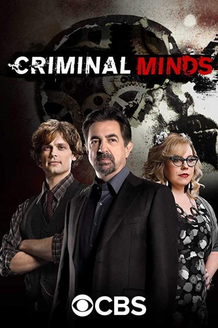 Criminal Minds S14E10 480p x264-mSD