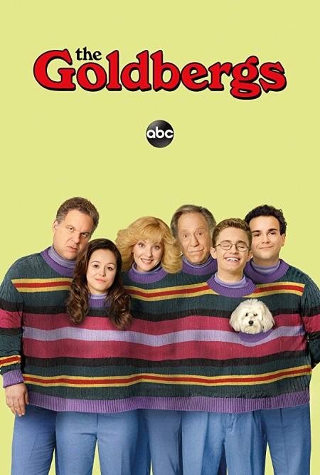 The Goldbergs 2013 S06E10 iNTERNAL 480p x264-mSD