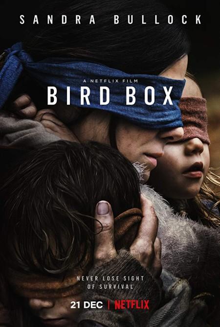 Bird Box 2018 NF 1080p WEB-DL H264 AC3-EVO