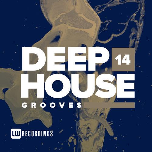 VA - Deep House Grooves Vol 14 (2019)