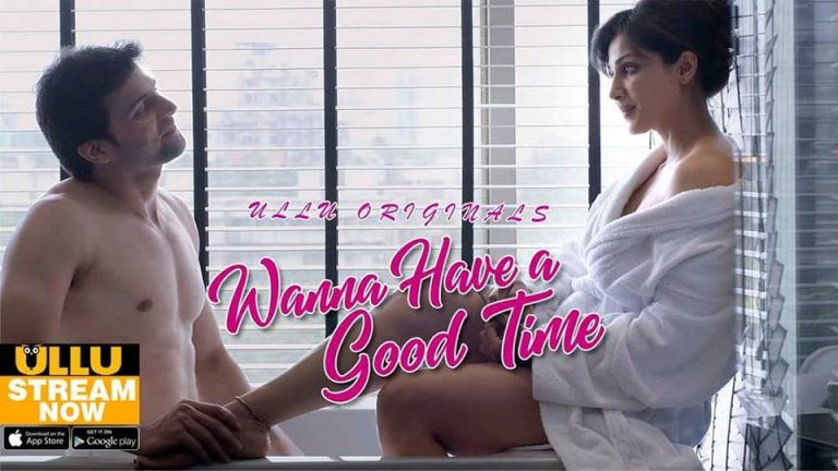 Wanna Have A Good Time 2019 720p WEB-DL x264 AAC Hindi 610MB-CraZzyBoY