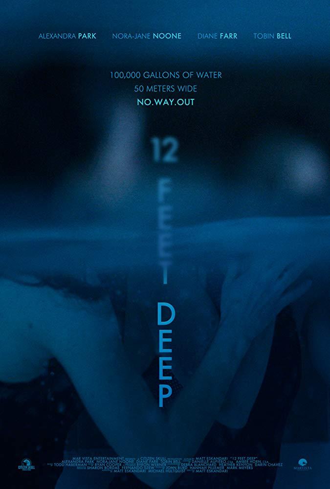 12 Feet Deep 2017 [BluRay] [1080p] YIFY