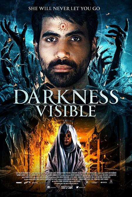 Darkness Visible 2019 1080p AMZN WEBRip DDP5 1 x264-NTG
