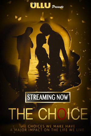 The Choice 2019 Hindi Season 01 Complete 720p HDRip x264-DLW