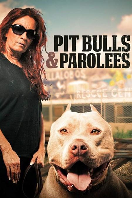 Pit Bulls and Parolees S13E06 Fire Dog WEB x264-CAFFEiNE