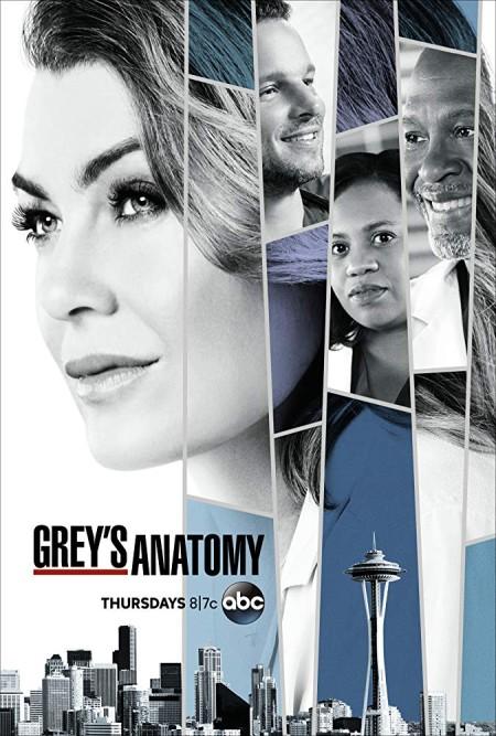 Greys Anatomy S15E15 720p HDTV x265-MiNX