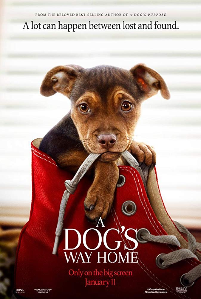 A Dogs Way Home 2019 720p BRRip XviD AC3-XVID