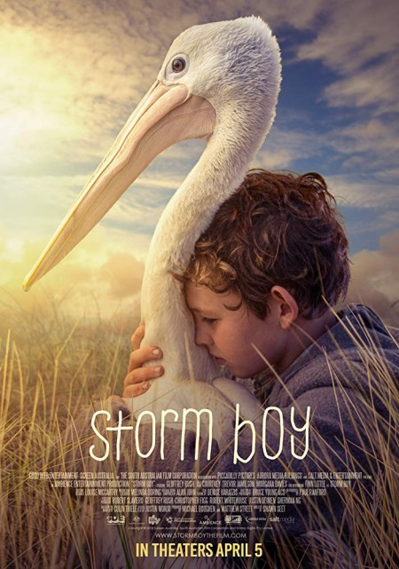 Storm Boy (2019) 720p WEBRip 800MB x264-GalaxyRG