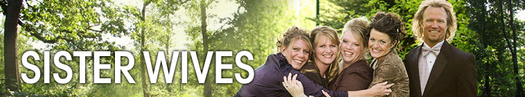 Sister Wives S02E22 Kody Climbs Into the Ring 480p x264-mSD
