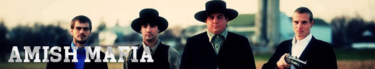 Amish Mafia S04E08 The End is Near INTERNAL WEBRip x264-GIMINI