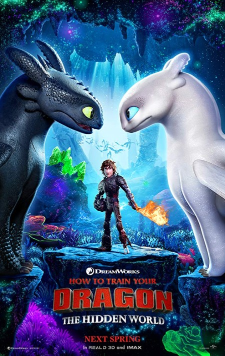 How to Train Your Dragon The Hidden World 2019 DVD NTSC YG