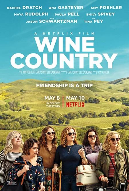 Wine Country (2017) 720p WEB-DL x264 Dual Audio Hindi 5 1 + English 5 1 AAC MSubs - LatestHDmovies