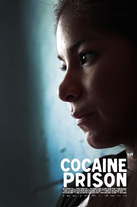 Cocaine Prison (2017) 720p WEBRip 800MB x264-GalaxyRG