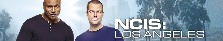 NCIS Los Angeles S10E24 iNTERNAL 480p x264-mSD