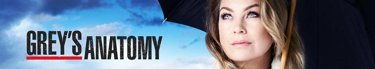 Greys Anatomy S15E25 720p HDTV x265-MiNX