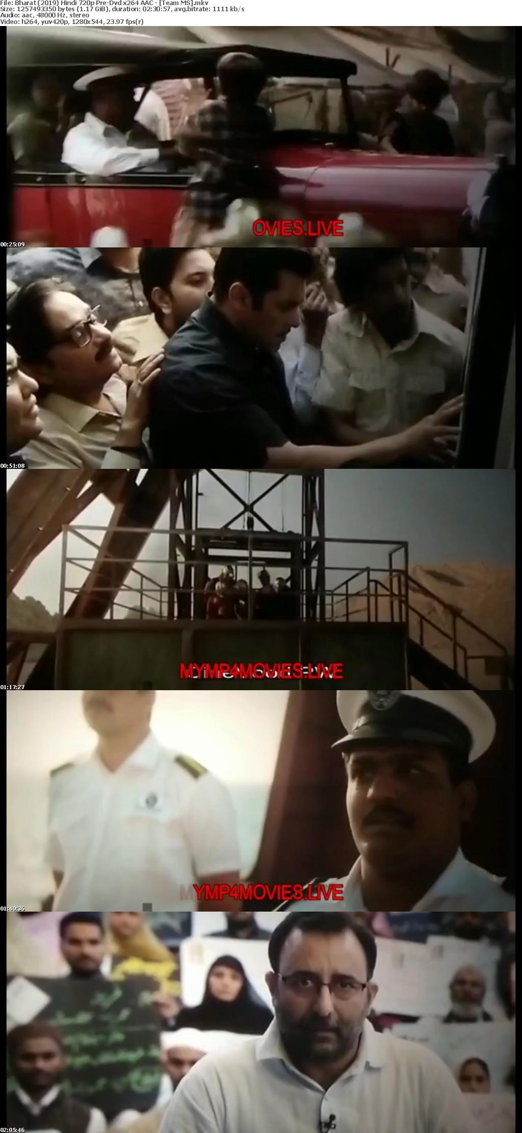 Bharat 2019 Hindi 720p Pre-Dvd x264 AAC - [Team MS]