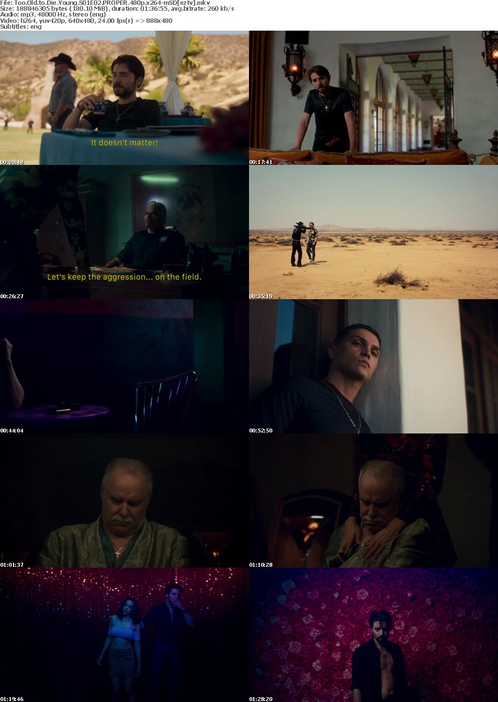 Too Old to Die Young S01E02 PROPER 480p x264-mSD