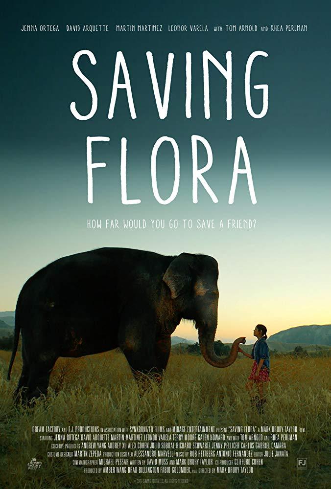 Saving Flora 2018 720p AMZN WEBRip DDP5 1 x264-CM